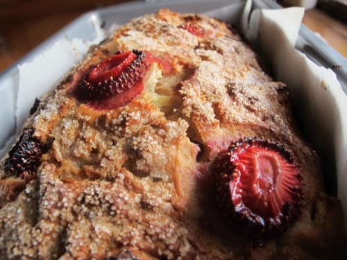 Banana and stone fruit bread image taken from top