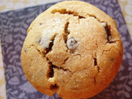 Sweetened condensed milk chocolate chip cookie